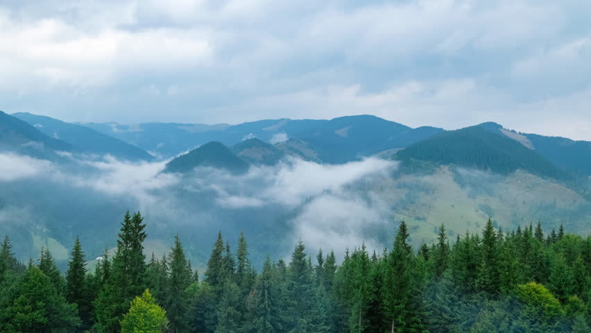 Time lapse clouds moving over pine tree highland forest. Foggy morning landscape at Carpathian mountains. Ukraine destinations and nature | Shutterstock HD Video #11907344