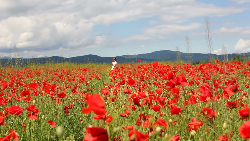 Red poppies field and young woman | Shutterstock HD Video #12211418