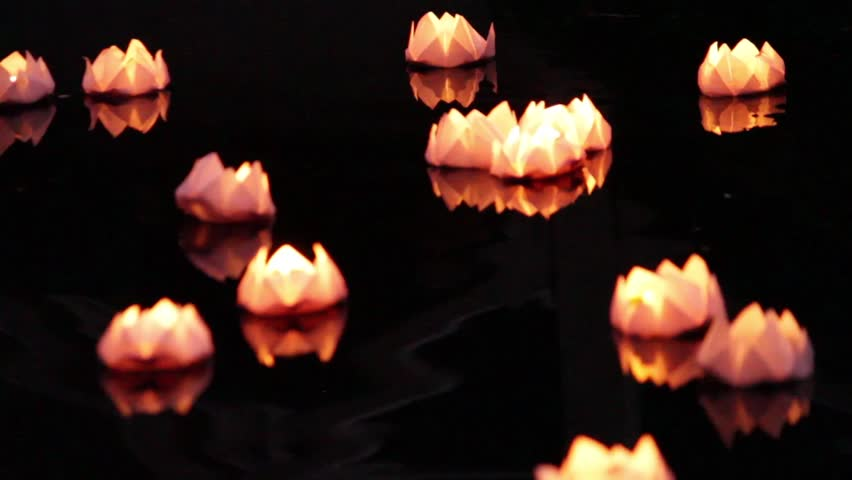 Origami flower stock video footage 4k and hd video clips floating lotus flower paper lanterns on water mightylinksfo