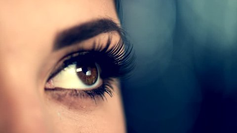 Beauty Woman Eye Makeup closeup. Beautiful Holiday Make-up for Brown Eyes. False eyelashes, Night Party