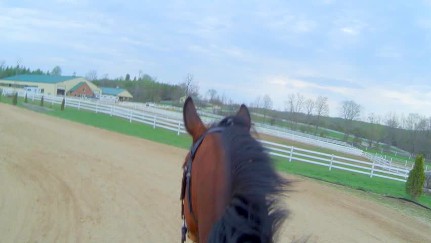 First Person View of Horseback Riding in Sand ring | Shutterstock HD Video #12472238