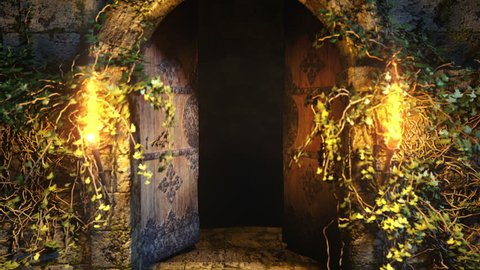 Dungeons overgrown with ivy. The entrance to the old underground . Old forgotten door. Moonlit night. Incendiary torches.