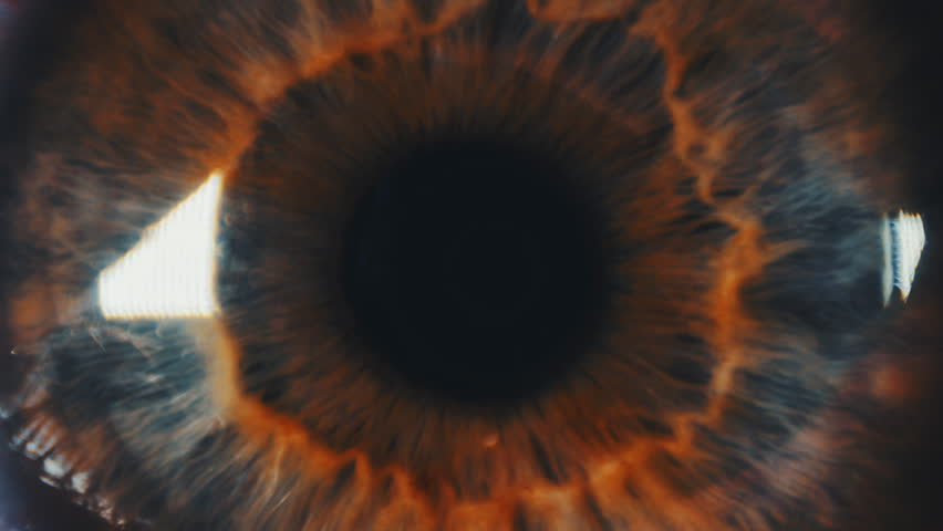 Eye iris and pupil extreme closeup. Iris different colors. Many color correction options