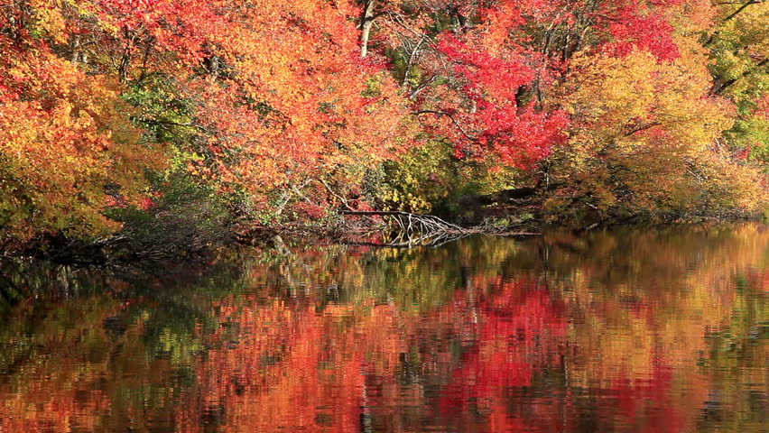 Colorful fall foliage reflected on surface of lake