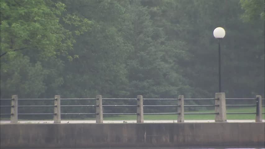 Ontario, Ottawa, Man biking in rain | Shutterstock HD Video #13304618