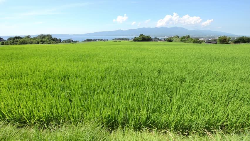 Summer scenery of Sado