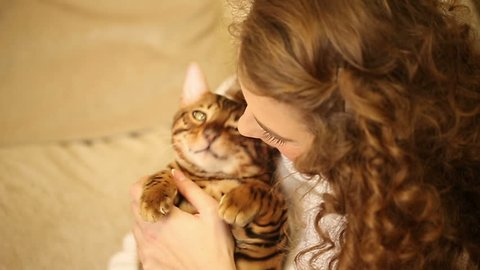 Young girl playing with a pet. Bengal cat. Girl hugging and playing with the cat. Home comfort. Best friends. She laughs.