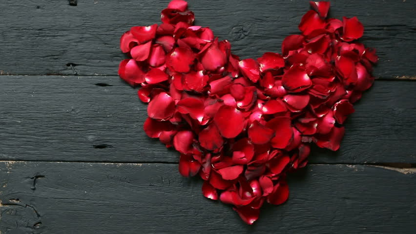 White Wallpaper with Red Rose Petals Heart and Roseu200b   Gallery ...