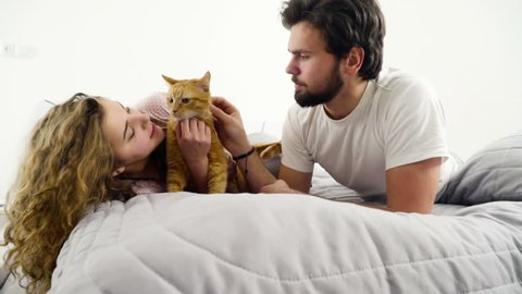 couple in bed caressing a ginger cat slow motion