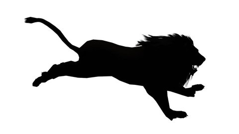 Lion run,Endangered wild animal wildlife running sketch silhouette. cg_02516