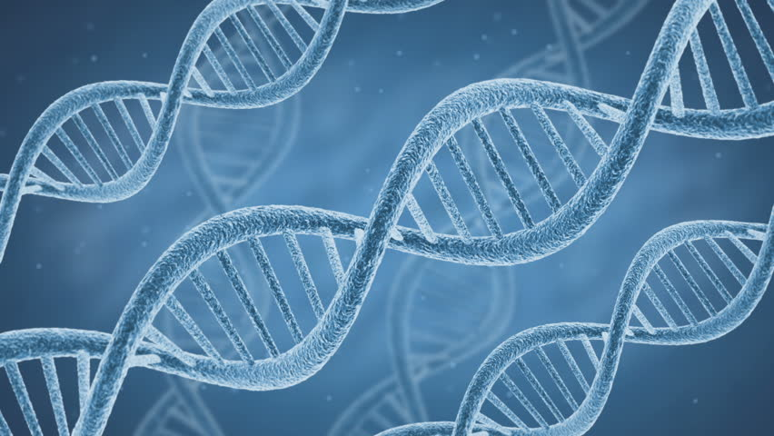 Animation DNA Helix | Shutterstock HD Video #14228288