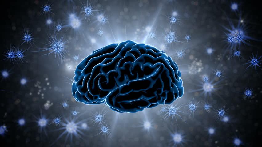 Stock Video Of Brain Impulses Neuron System Human Anatomy
