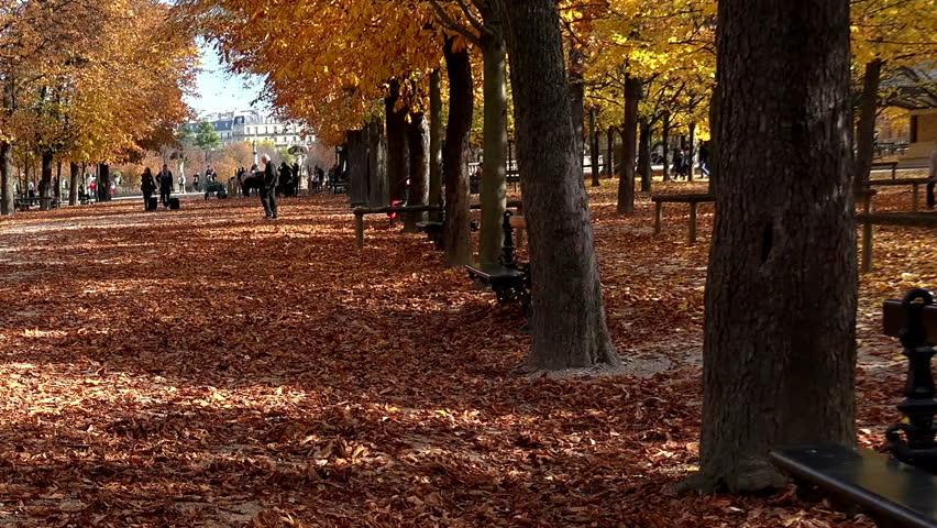 Luxembourg gardens in Paris. France. Jardin du Luxembourg. | Shutterstock HD Video #14357242