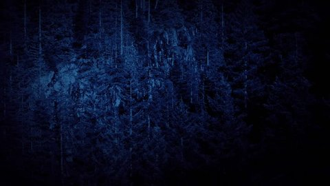 Flying Past Cliffs In Forest At Night