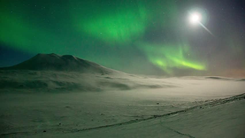Free Moonlit Night Stock Video Footage - (832 Free Downloads)