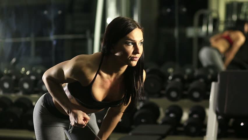 Bodybuilder Exercising Biceps At Gym Stock Footage Video 1889815 ...