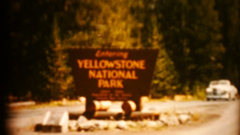 yellowstone animals 1080p 8mm transfer 1950s
