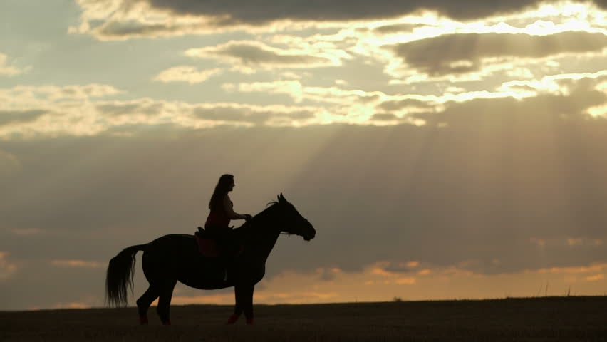 Lockdown shot of woman riding horse in nature. Female is enjoying horseback riding on field during sunset. She is with domestic animal against orange sky.
