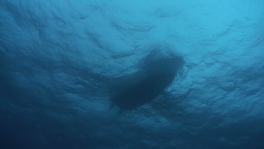 View of Panga boat from underwater
