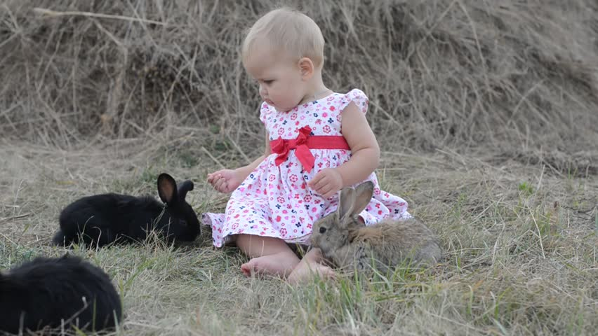 Image of: Deadly Little Girl With Real Rabbit Child Playing With Pet Bunny Kids Play With Animals Children At Easter Egg Hunt Toddler Kid In Flower Crown And White Shutterstock Little Girl With Real Rabbit Stock Footage Video 100 Royaltyfree