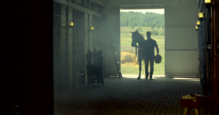 Horse barn silhouette with man Farm | Shutterstock HD Video #15871498