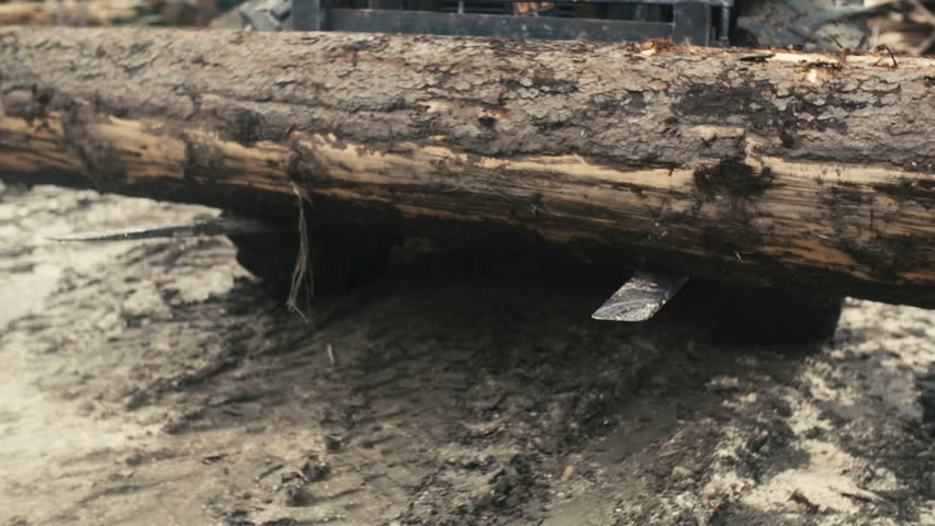 Large Log Loader and Operations Stock Footage Video (100% Royalty-free)  16175548   Shutterstock