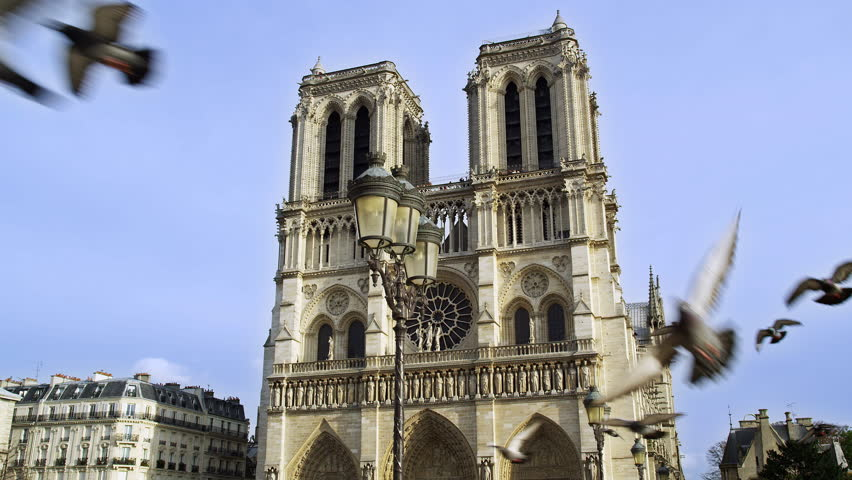 Notre Dame De Paris Cathedral with Pigeons Flying France 4K Stock Video Footage