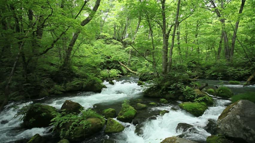 River,japan,   Shutterstock HD Video #16326358