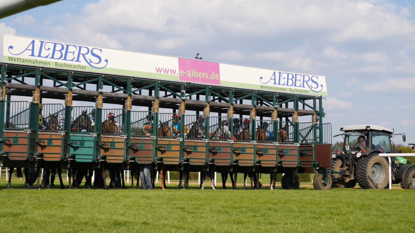 """Horse racing days at a racing course """"Neue Bult, Hannover, Germany, 01/05/2016"""". Race start scene close up, low angle shot  Horse Racing low angle shot race start scene"""