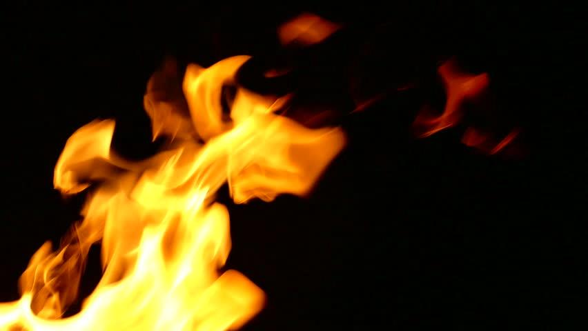 Flames Burning on Black Background | Shutterstock HD Video #16355998