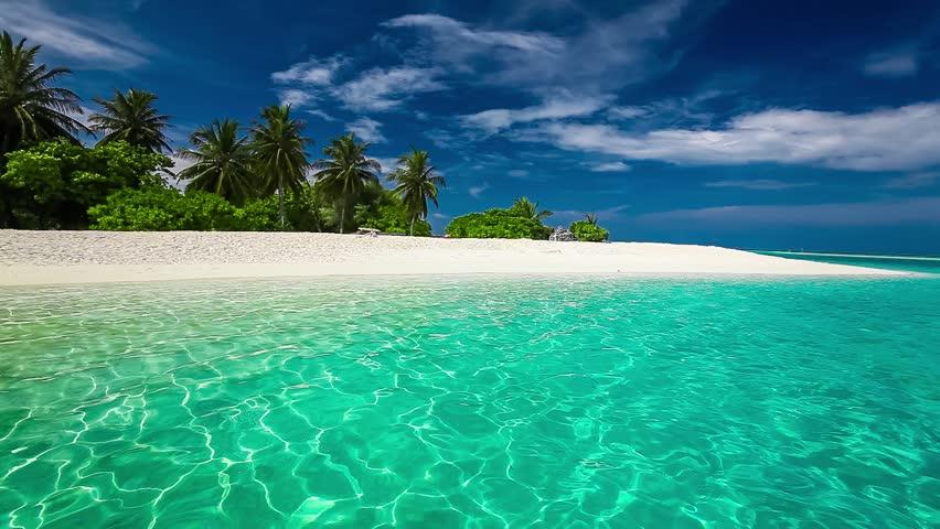 Palm trees on a tropical island white sandy beach