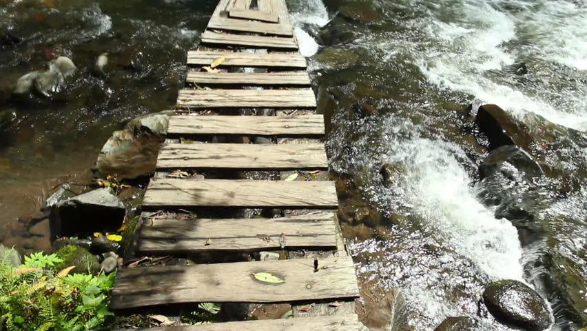 Walking along a boardwalk over a river in the Ecuadorian Andes