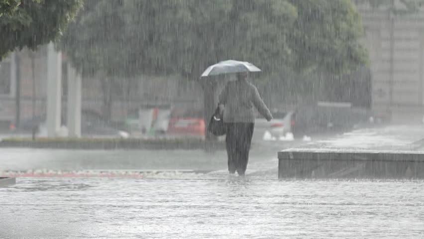 Heavy Rain, a Downpour in the City Park | Shutterstock HD Video #16946008