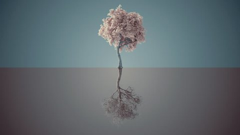 Tree grows both up and down, with alpha. Realistic 3d animation 4k