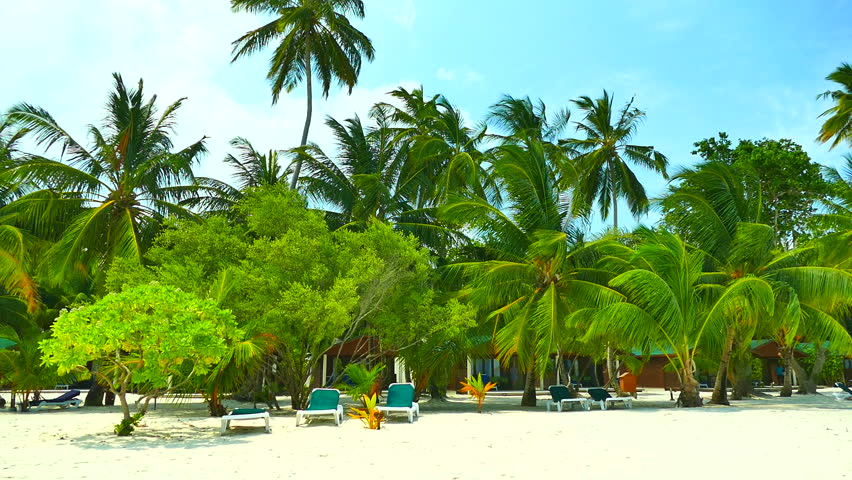 Beautiful tropical beach and sea in maldives island | Shutterstock HD Video #17241211
