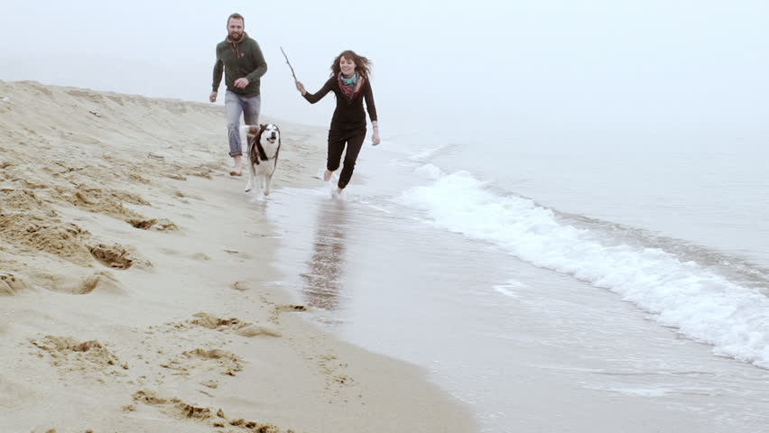 Attractive cheerful couple walking with dog at...