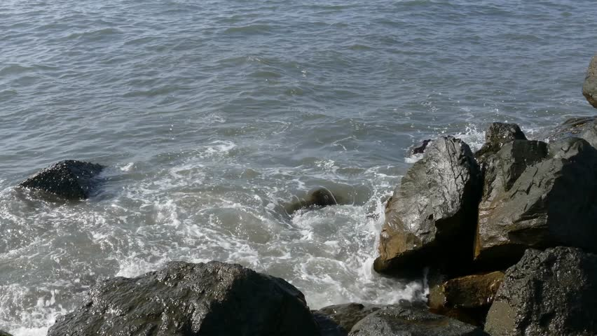 Sea beach 4k footage | Shutterstock HD Video #17390968