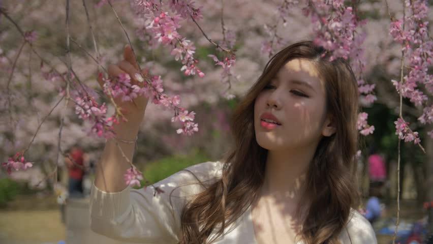 Beautiful Japanese girl walking under amazing cherry blossom sakura tree Slow motion