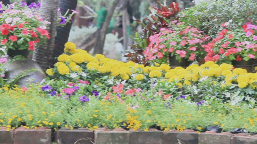 Wood Swing In The Flowers Stock Footage Video 100 Royalty Free