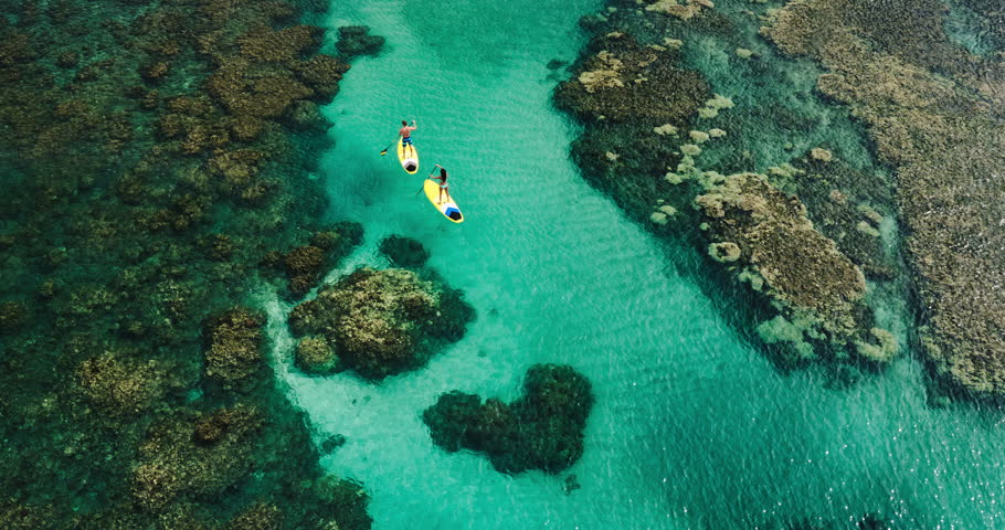 Aerial view of young couple stand up paddling on vacation #17565118