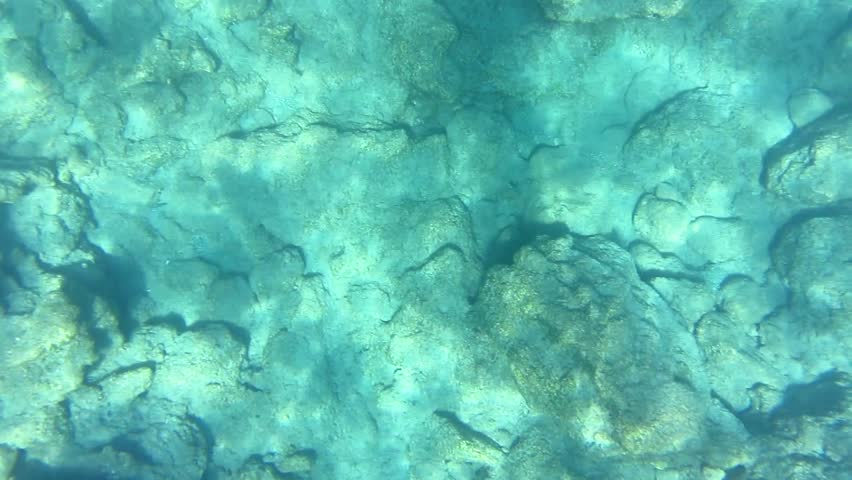 Top down underwater footage of rocks and stonesand light reflections on the bottom of the sea. | Shutterstock HD Video #17593738