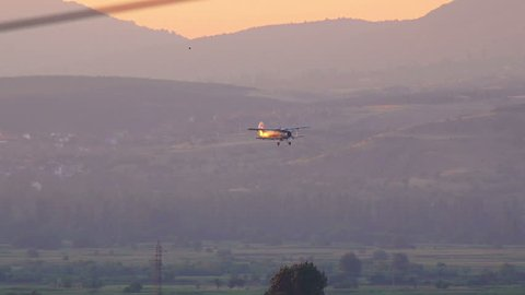 View from the tail of a crop duster as the spray is being applied to the field of wheat at sunrise
