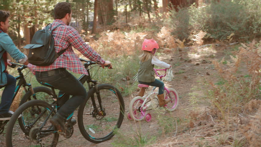 Male couple and daughter in a forest cycle past, back view