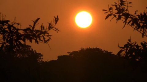timelapse sunset over the jungle, Amazonas, Brazil, 2015