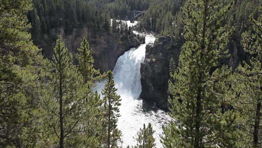 Famous and beautiful Upper Yellowstone Falls. View through pine forest. Several hundred feet tall falling into the Grand Canyon of the Yellowstone. Wyoming. National Park nature and wilderness area.