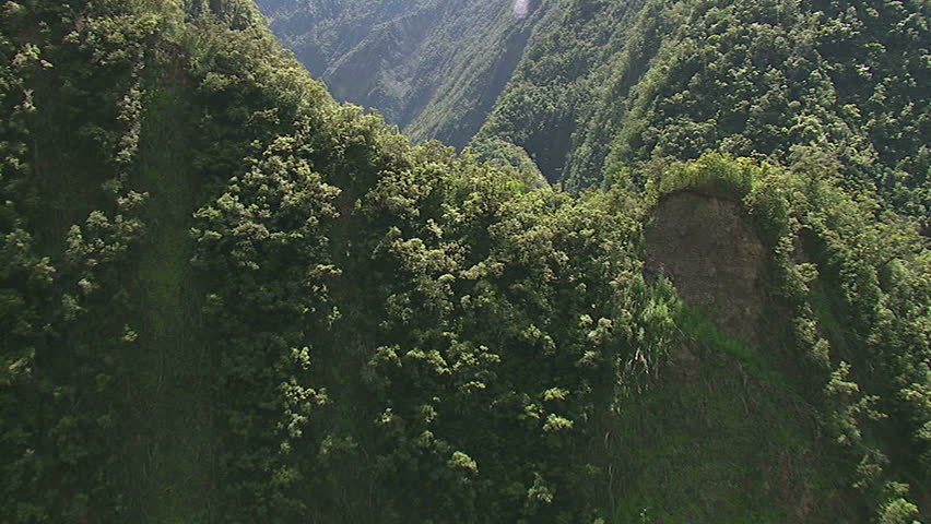 Aerial inside of a valley on the northern side of Hawaii island