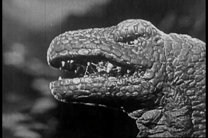 Image result for allosaurus 1925