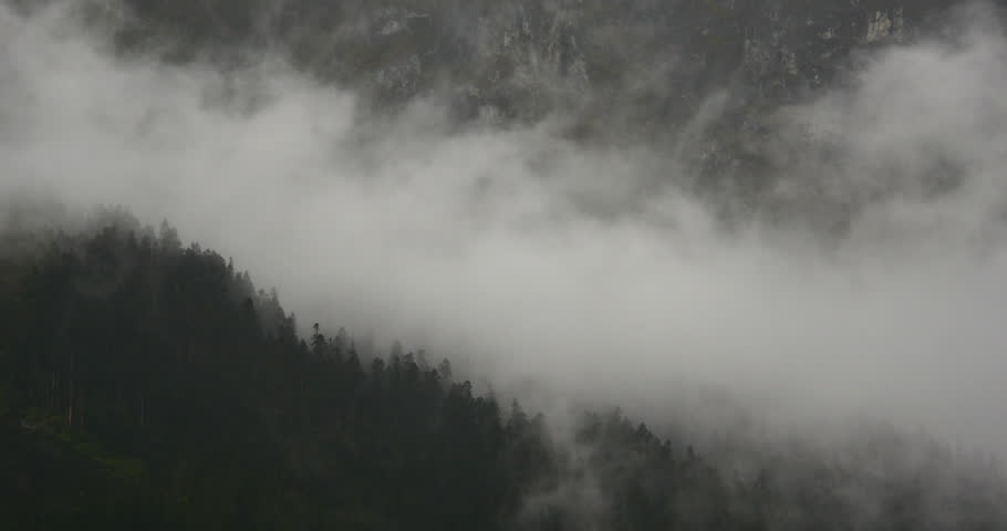 4k time lapse of mountain mist rising in the morning,fog pine trees,such as wonderland.Bomi County in tibet,the largest precipitation area in China. gh2_09924_4k