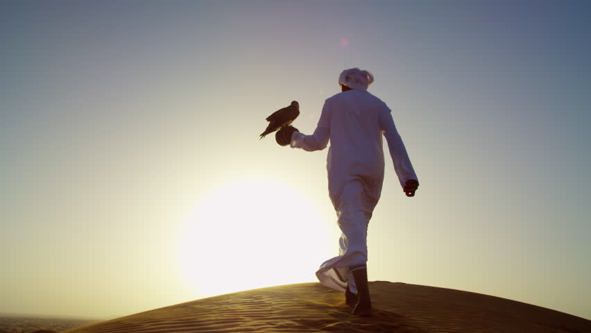 Proud Arab in dishdasha in silhouette at sunrise with his trained falcon