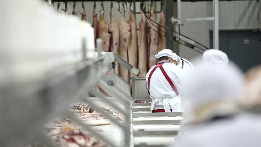 Processing of meat production